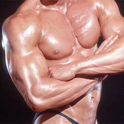 250-bodybuilder-optimised.jpg